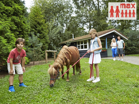 6-persoons stacaravan/chalet (max 2 volw.) Buffalo Ranch House met pony