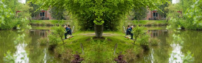 Bungalowparken in een bosrijke omgeving