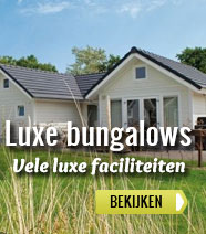 Luxe bungalows