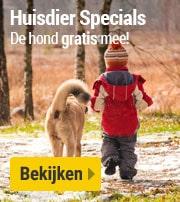Huisdier Specials: de hond gratis mee