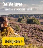 Vakantieparken op de Veluwe