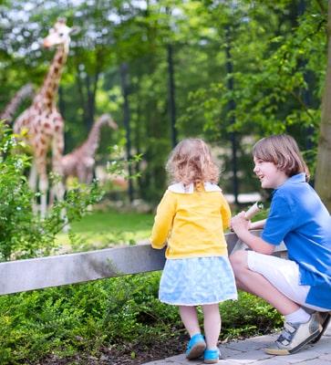 Bungalowparken nabij dierentuin