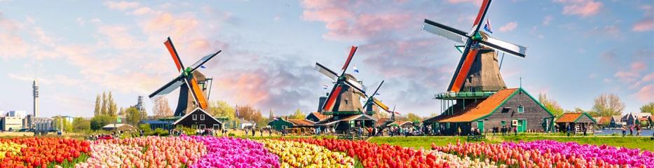 De beste aanbiedingen voor vakantiehuisjes in Nederland