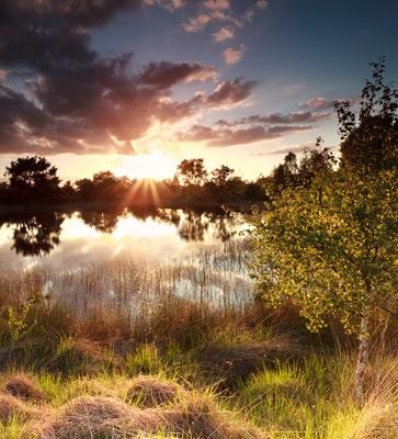 Vakantie Noord-Brabant
