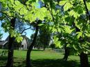Park Molenheide