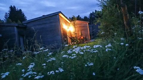 4-persoons bungalow Eden Comfort TF953