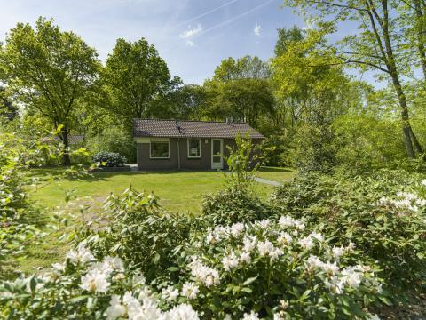 6-persoons bungalow ANWB Super Deal - Kraaiheide