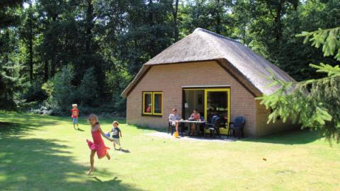 6-persoons bungalow Veluwe