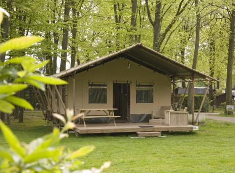 6-persoons tent Woodlodge